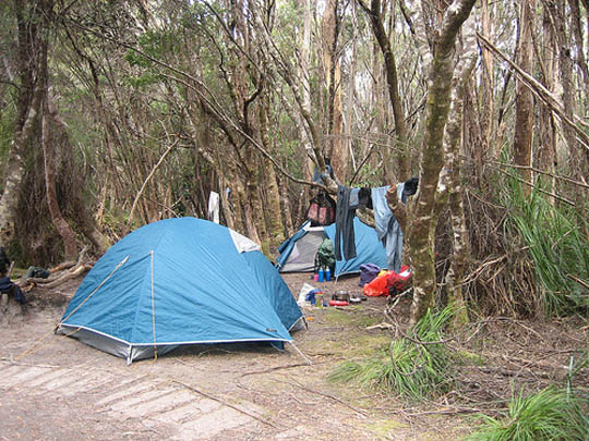 Camping on the South Coast Track