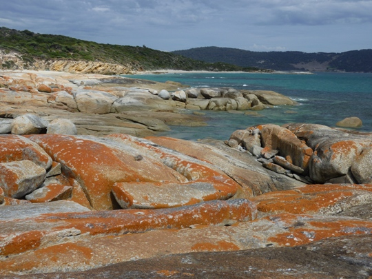 Beautiful coastline - Flinders Island