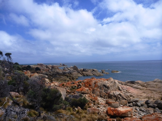 The Docks, Flinders Island